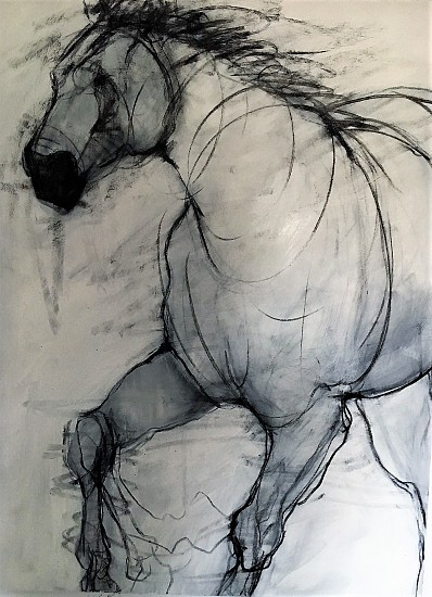 Helen Durant, Raw 2018, Acrylic and Charcoal on Canvas